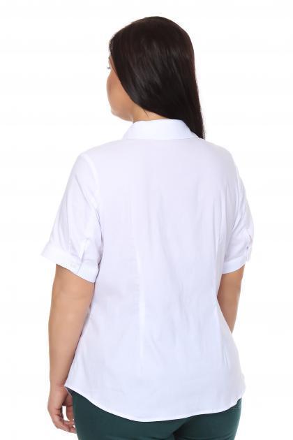 Артикул 16232 - блузка большого размера - вид сзади