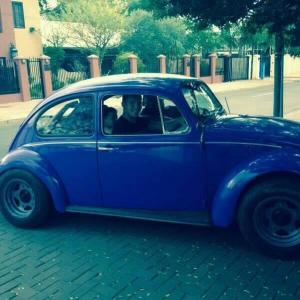 Volkswagen Beetle in