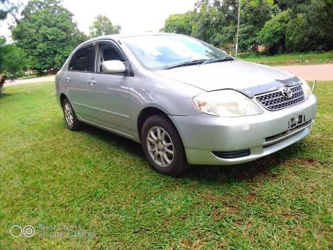 Used Toyota Corolla in Zimbabwe